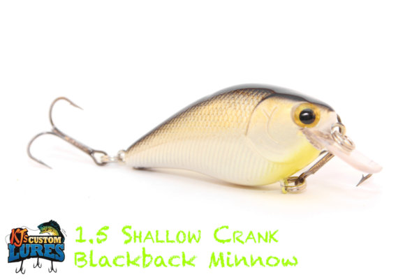 kjs-shallowcrank1point5-blackbackminnow