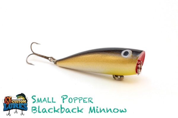 kjs-smallpopper-blackbackminnow